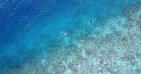 many people young boys girls snorkeling over coral reef with drone aerial flying view in crystal clear aqua blue shallow water Stock Photo