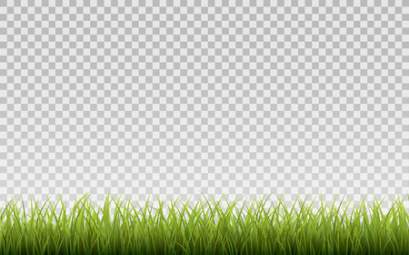 Green Grass Border, Isolated on Transparent Background, With Gradient Mesh