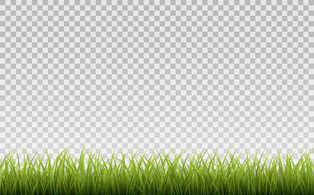 Grenze des grünen Grases, lokalisiert auf transparentem Hintergrund, mit Steigungsmasche Standard-Bild