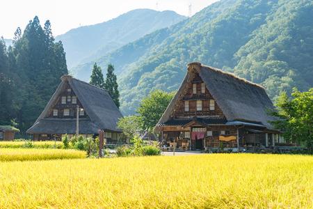 ogimachi: Gassho-Zukuri Gassho-style Houses in Suganuma area of Gokayama, Japan