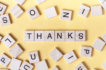 text of THANKS on wooden cubes. Wood abc. Stock Photo