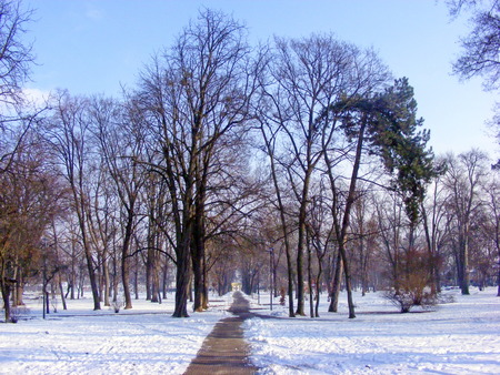 way out: The only way out of the park at winter time Stock Photo