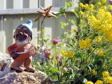 garden gnome: Little garden gnome in the rock garden with flowers Stock Photo
