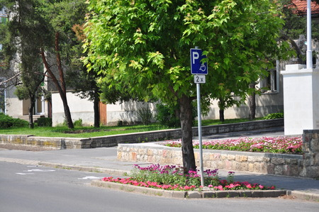 disabled parking sign: Disabled parking place and sign with flowers