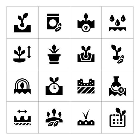 siembra: Fije los iconos de semillas y plántulas aisladas en blanco