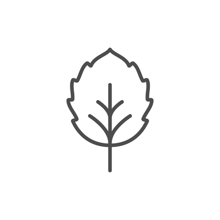 Leaf line icon isolated on a white background.
