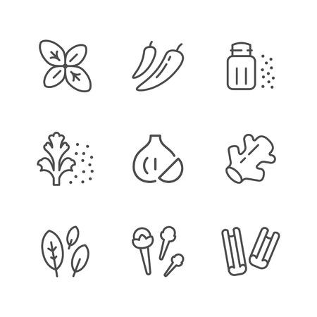 Establecer iconos de línea de condimento aislado en blanco. Ilustración vectorial
