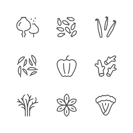 Set line icons of seasoning isolated on white. Vector illustration