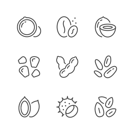 Set line icons of nuts and seeds isolated on white. Vector illustration