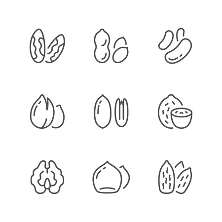 Set line icons of nuts isolated on white. Vector illustration 일러스트