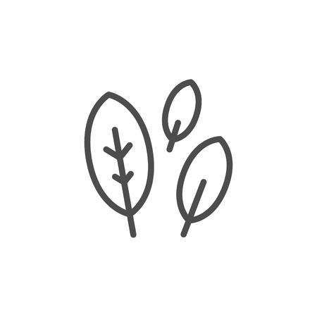 Bay leaf line icon isolated on white. Vector illustration Vektorgrafik