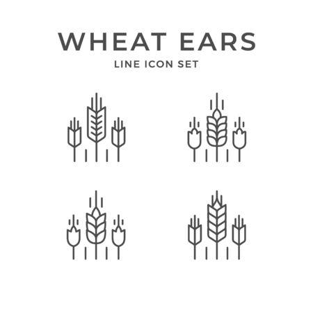 Set line icons of wheat ears Foto de archivo - 138241348