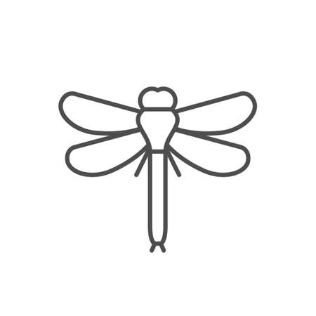 Dragonfly line outline icon or insect concept