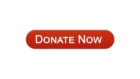 Donate now web interface button wine red color, social support, volunteering, stock footage