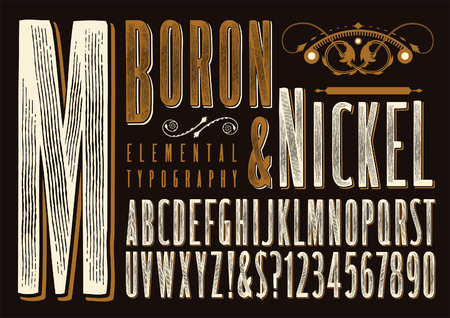 Boron & Nickel is an original type design with a rustic or old-west vibe 免版税图像