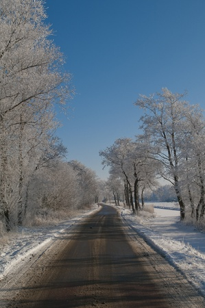 Road winding under a clear blue sky through snowy woods and along a frozen snow covered stream.