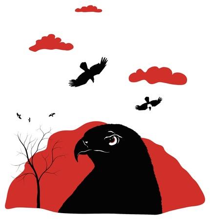 birds of prey on red Illustration