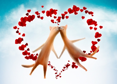 Valentine card background with funny cats and hearts in the sky Stock Photo - 17156478