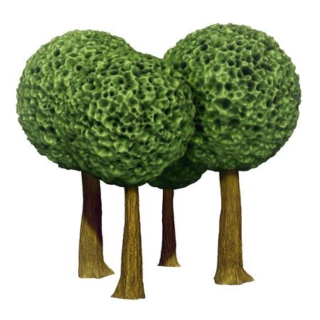 Ball shaped trees, 3d based