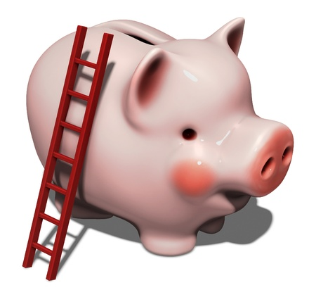 Huge pink piggy bank with ladder isolated on white
