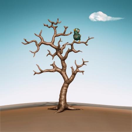 perching: Blue bird perching in the dead tree