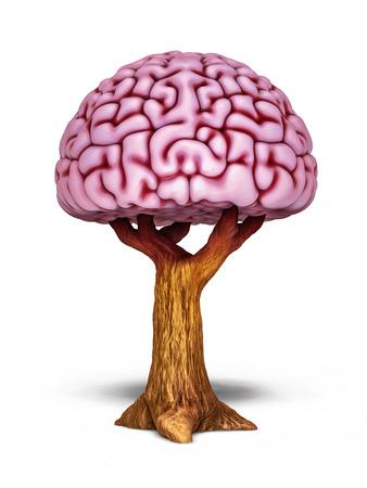 Brain tree. Intellectual growth illustration