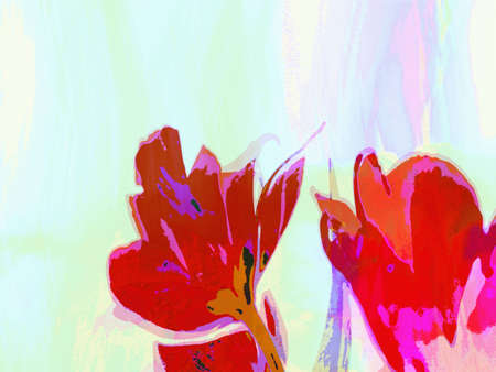 painted tulips, digital painting from original photo of tulips