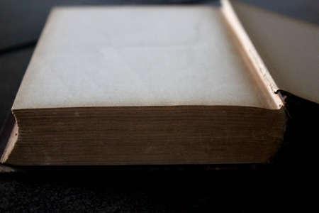 골동품 책 빈 페이지