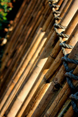 bamboo fence rope tied point of focus closeup