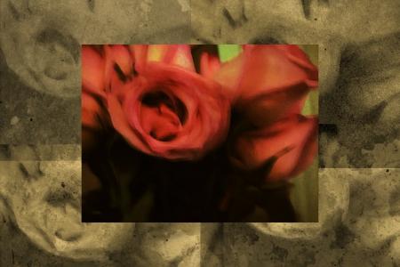 vintage soft rose background