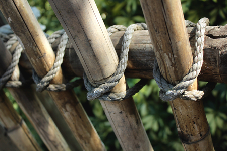 bamboo and rope fence