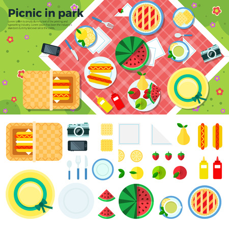 Summer picnic in park on the meadow,  fruits, cake, hotdog, napkins, plates, camera, cookies, berries. Top view. Icon set flat design of picnic items flat modern style illustration.