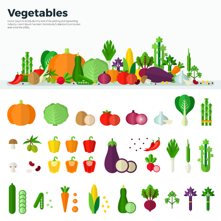 Concept van gezonde voeding. Banner en geïsoleerde iconen van groenten op een witte achtergrond in plat design. Wortel, pompoen, ui, tomaat, champignon. Voor web, applicaties, banners, brochures, covers Stockfoto - 56712803