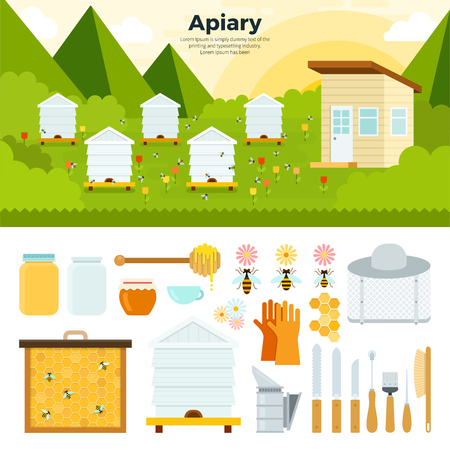 apiary: Apiary flat illustrations. Apiary in the garden. Organic food concept. Natural honey in banks, bees, honeycombs, bee hives, sunflower isolated on white background