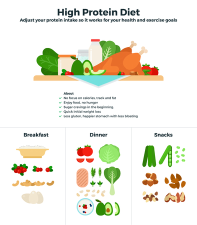 dose: High protein diet flat illustrations. Products containing high dose of protein, recomendations for healthy nutrition. Products classified for breakfast, dinner and snacks isolated on white background