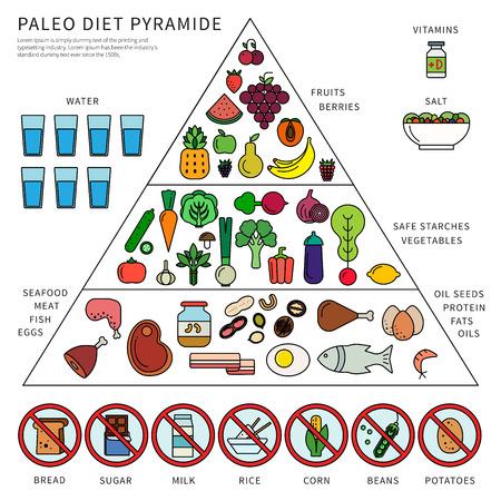 Paleo diet pyramid Stock Illustratie