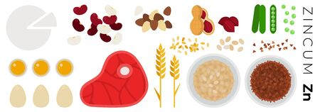 Vegetables and Animal Products with Zincum vector flat icons set with peas, beef, beans, soft cheese, peanut, oatmeal, buckwheat. Isolated on white background. Illustration