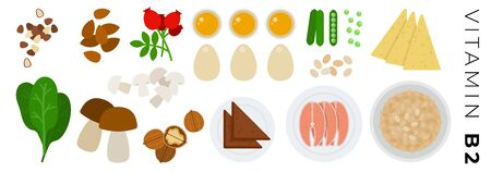 Products with vitamin B2 vector flat icons set with oatmeal, peas, salmon, mushrooms, eggs, spinach. Isolated on white background.  イラスト・ベクター素材