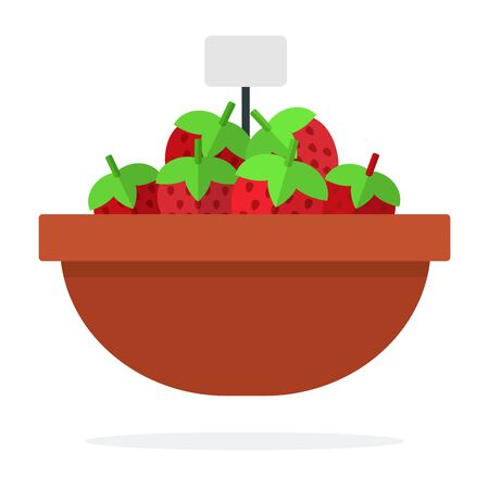 Strawberry in a clay dish for sale vector flat material design isolated on white