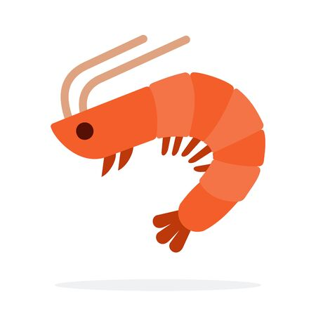 Mediterranean shrimp vector flat isolated Illustration