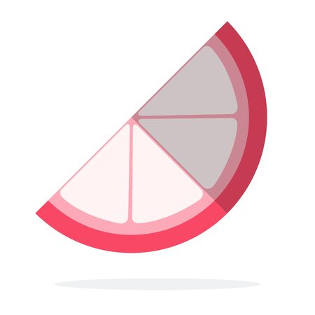 Piece of lychee fruit vector flat isolated