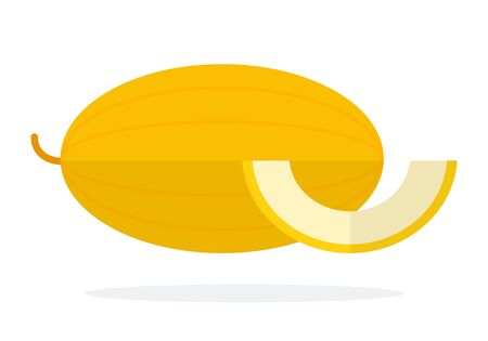 Whole melon and a piece of melon flat isolated Vetores
