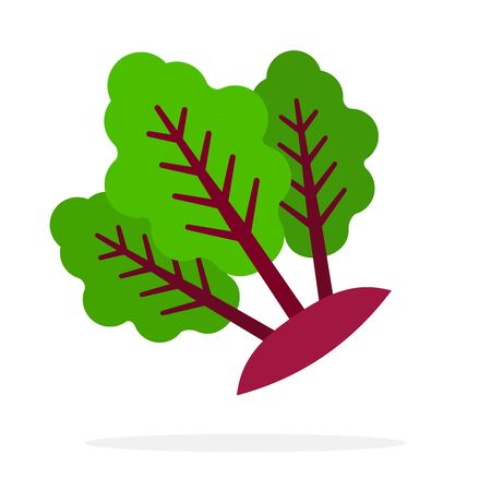 Beetroot stems with leaves flat isolated Illusztráció