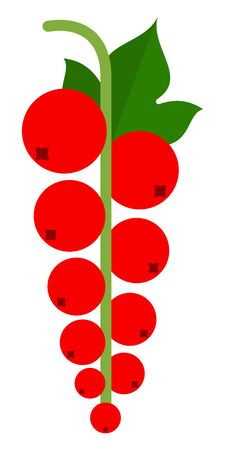Red currants sprig vector icon flat isolated Vektoros illusztráció