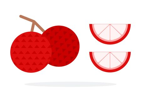 Two lychee fruit on a branch and two lychee wedges flat isolated Illustration