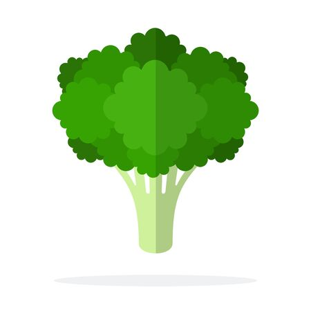 Bunch of broccoli vector flat material design isolated on white Иллюстрация