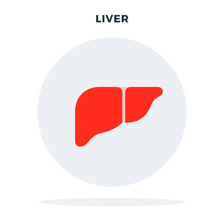 Human liver in a circle vector flat material design object. Isolated illustration on white background.