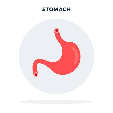 Colored human stomach flat vector