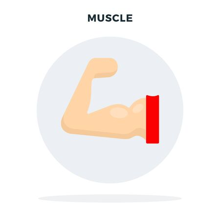 Muscle on the arm in a gray circle vector flat isolated Illustration