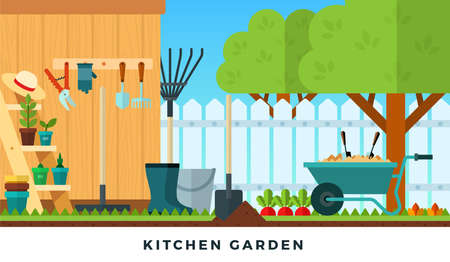 Colorful vector flat illustration of kitchen garden. Tools for gardening.